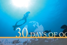 30 Days of the Ocean / NOAA's National Ocean Service is celebrating National Ocean Month and World Ocean Day with 30 Days of the Ocean. Be sure to visit each day for new images as we celebrate our #ocean. #30DaysofOcean / by NOAA National Ocean Service