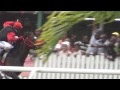 Barbados Sports / by Totally Barbados