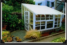 Gardening and Green Roof ideas / by Lory Henning/ Project Happy Life