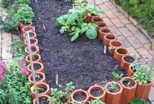 Garden Ideas / by Sandra Arciniega