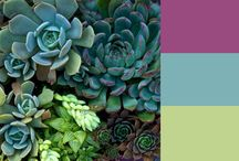 Color Combinations That Rock / Colors that go well together. / by Sharon Casto