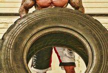 Bodybuilding & Fitness  / by Braydon Carter