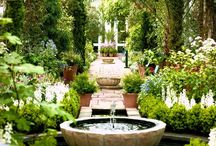 Garden Inspiration / by Paige Spink