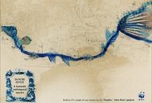The Danube River / by Paul Stewart