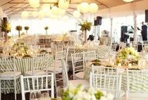 Wedding / by Kristin Weber