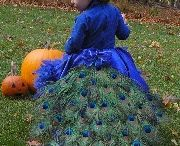 Halloween costume ideas / by Angela Spencer