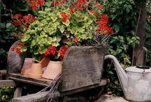 Prim Gardening / by Rene Cobb Cornette