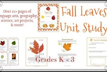 Fall Unit / by Amy Thrasher