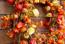 FALL time Highlights / What's stood out with the season... / by Pinning Towards Understanding