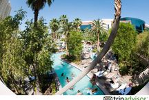 TripAdvisor: Las Vegas / My favorite destinations in Las Vegas plus places I want to try on my next trip  / by Kate