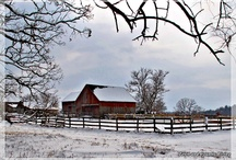Makes My Heart Feel at Home / by Stephanie @ The Cozy Old Farmhouse