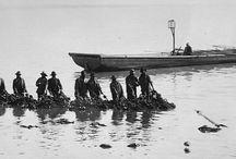 Chesapeake Bay History / by Chesapeake Bay Trust