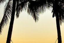 Beach Fantasy Escape / by Angela Franklin
