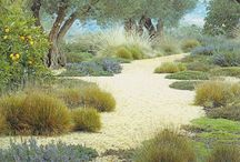 garden and landscape / by Amy Beaudoin