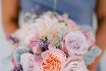 Wedding / Wedding Ideas / by Dannielle Morgan