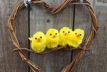 Chicks / by Mary Lozano