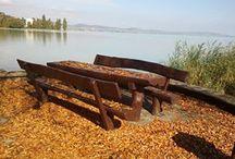 Hungary / ...get closer... / by Judit Cseri