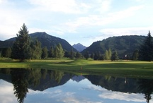 Colorado Golf Courses / Great Colorado golf courses at great online tee time prices / by GolfByMe