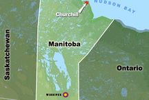 ♍anitoba Happenings  / This board shares information about the people, places and events in Manitoba the province where we live in Canada. Winnipeg is our old home town but we left big city life behind and moved to Manitou in 1994. Manitoba has a lot to do and we are proud Canadians no matter where we go in our country.  / by CD CREATIVE COMMUNICATIONS