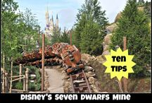 Walt Disney World Attractions, Rides & Shows / by The Magic For Less Travel - Specializing in Disney and Universal Vacations