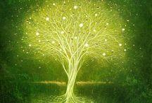 birds and branches. / by Savanna Ziegler