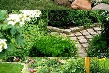 Landscape ideas / by Charin Nelson