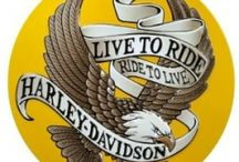 Harley Davidson - LIVE TO RIDE - RIDE TO LIVE!!!! / by Marie White