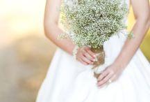 Wedding Flower Fun / by Cindy Harvey