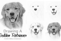 Drawing Lessons / Upcoming online drawing lessons! Stay Tuned! / by Realistic Pencil Drawing - How To Draw