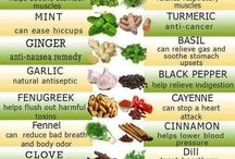 Healthy Recipes / by Cindy McKinney
