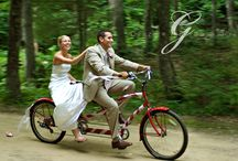 Bridal Vehicles Coast to Country Weddings  / Whether you are after a horse and carriage or a stretch limousine, Coast to Country Weddings featured advertisers have you covered. / by Coast to Country Weddings