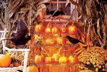 Halloween/Fall / by Shannon Panisko