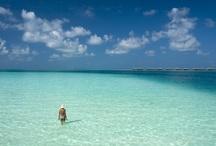 Shades of blue / Shades of Maldivian blues... / by Conrad Maldives