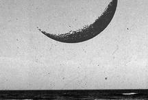 Moon / by Uva Nho