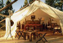 Camping / by Lorrie Matthews