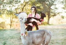 DSE Styled Shoot / Nashville styled shoot 2014 / by Frances Corkill