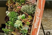 In the Garden / Gardening tips, techniques and tools for the green thumb in you. / by The Davey Tree Expert Company