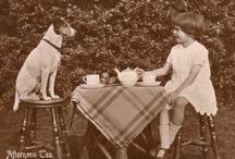 Terrier Love / man's best friend / by Barb Priestley