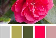Pretty Palette   / by Meredith Rhinas