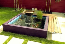 DIY~Ponds,Gardens, Walkways, Landscaping / by Barbara Downing