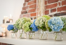 Wedding Bells please / by Sarah Hershey