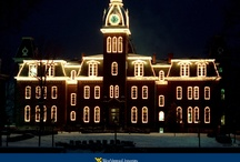 WVU / by Jennifer Spangler