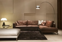 leather sofas / by roya b