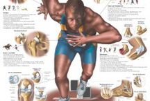 Accidents/ Sports Injuries / by Pain Stop Clinics
