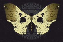 skulls, skellies, and  the like / by Liz Clark