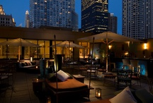Terrace Rooftop / by Conrad Chicago