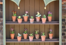 auriculas / by Louise