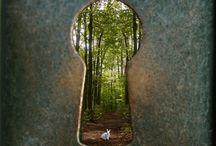 click! / photography inspiration / by Paula Colvin