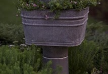 Outdoor Projects / by Margo Johnston