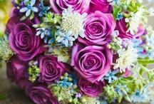 Wedding / by Teresa Strickland